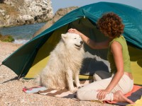 Pet Friendly Campgrounds | South Carolina